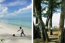 Bahamas2008c.jpg