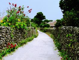 okinawaphoto1.jpg
