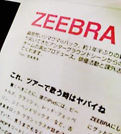 zebb.jpg