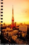 tokyot69369_145.jpg